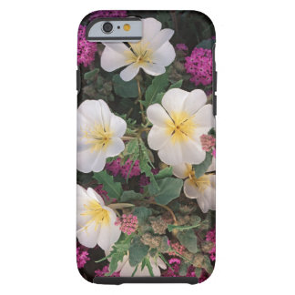 Desert Evening Primrose and Desert Sand Verbena, Tough iPhone 6 Case
