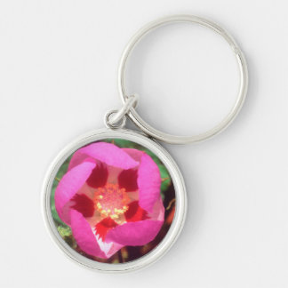 Desert Five Spot Wildflower Key Ring