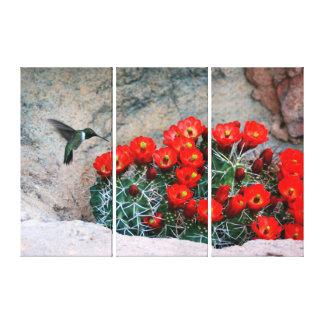 Desert Hummingbird Canvas Print