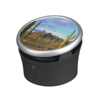 Desert in springtime bluetooth speaker