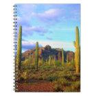 Desert in springtime notebook
