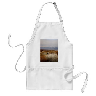 DESERT LANDSCAPE IN EARLY SPRING APRONS