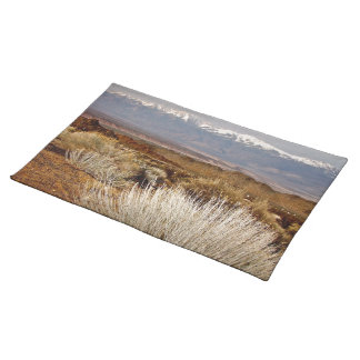 DESERT LANDSCAPE IN EARLY SPRING PLACEMATS
