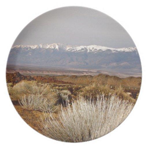 DESERT LANDSCAPE IN EARLY SPRING PLATES