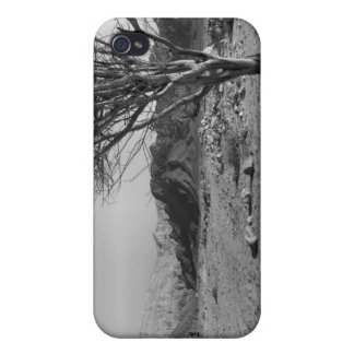 Desert Landscape Covers For iPhone 4