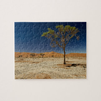 desert Landscape with tree of Namib at Puzzle