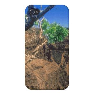 Desert Life iPhone 4 Cover