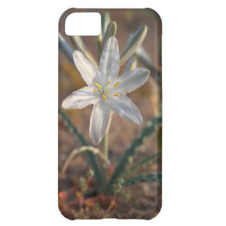 Desert Lily Wildflowers iPhone 5C Case