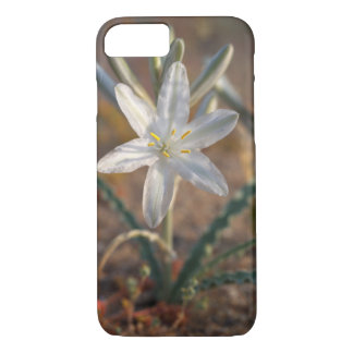 Desert Lily Wildflowers iPhone 8/7 Case