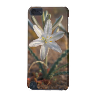 Desert Lily Wildflowers iPod Touch (5th Generation) Cases