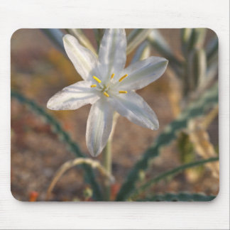Desert Lily Wildflowers Mouse Mat