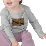 desert lizard t-shirt