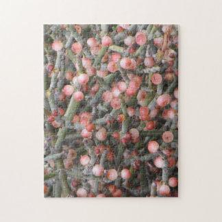 Desert Mistletoe Berries Puzzle