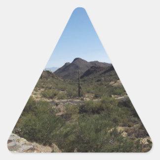 Desert Pass Sticker