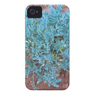 Desert plant iPhone 4 Case-Mate case