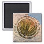 Desert Plant Life Magnet