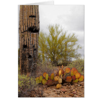 Desert Plants Card