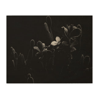 Desert Plants in Black and White Wood Canvas