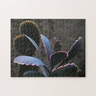 Desert Plants Jigsaw Puzzle