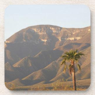 Desert ranch landscape near Monterey, Mexico. Beverage Coasters