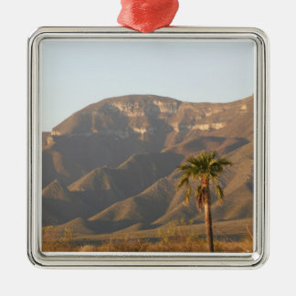 Desert ranch landscape near Monterey, Mexico. Christmas Ornament