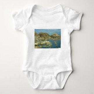 Desert Reflecdtions 4 Baby Bodysuit