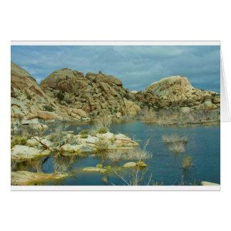 Desert Reflecdtions 4 Greeting Card
