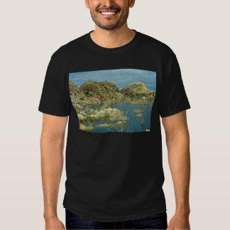 Desert Reflecdtions 4 T-shirt