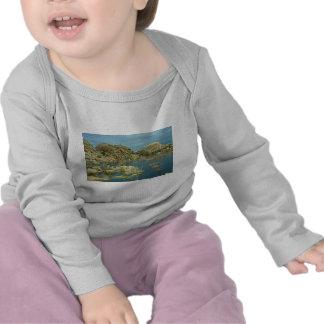 Desert Reflecdtions 4 T Shirts