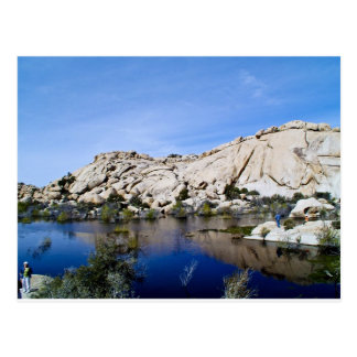 Desert Reflections 10 Postcard
