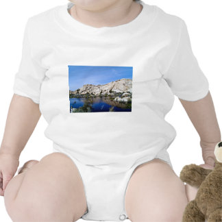 Desert Reflections 10 Shirt