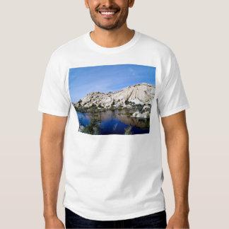 Desert Reflections 10 T Shirt