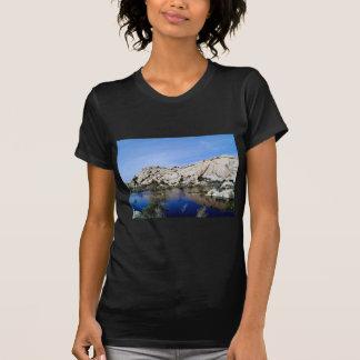 Desert Reflections 10 T Shirts