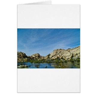 Desert reflections 11 greeting card