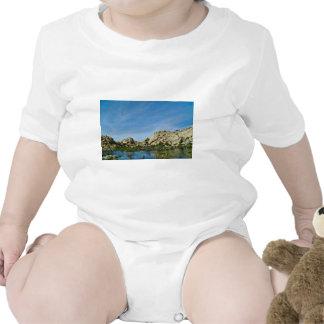 Desert reflections 11 t-shirts