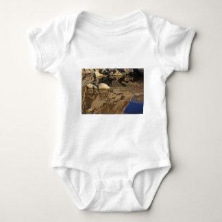 Desert Reflections 5 Baby Bodysuit