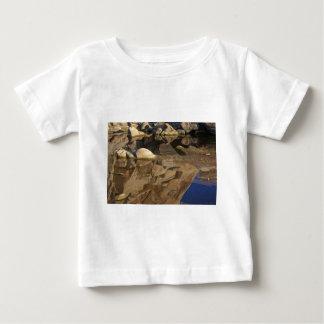 Desert Reflections 5 Baby T-Shirt