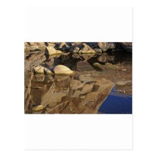 Desert Reflections 5 Postcard