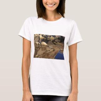 Desert Reflections 5 T-Shirt