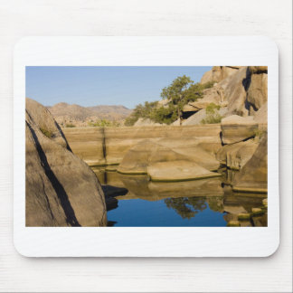 Desert Reflections 6 Mouse Pad