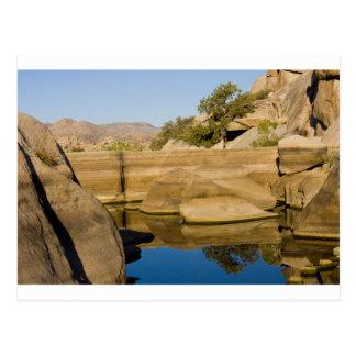 Desert Reflections 6 Postcard