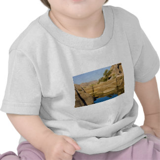 Desert Reflections 6 Tee Shirt
