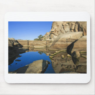 Desert Reflections 7 Mouse Pad