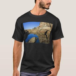 Desert Reflections 7 T-Shirt