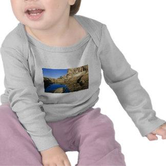 Desert Reflections 7 T Shirt