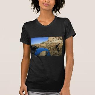 Desert Reflections 7 Tee Shirt