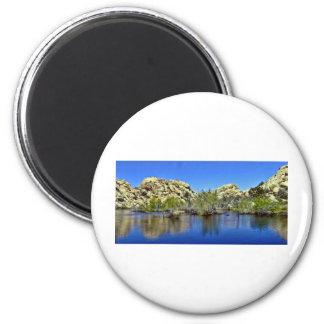 Desert Reflections 9 Fridge Magnet