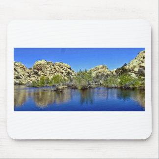 Desert Reflections 9 Mousepads
