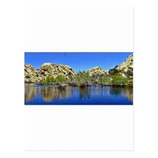 Desert Reflections 9 Postcard