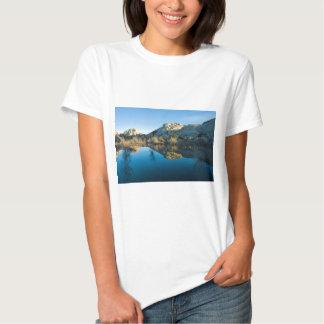 Desert Reflections T-shirt